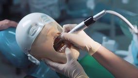 Зубоврачевание студента практикуя на медицинской кукле Стоковые Изображения RF