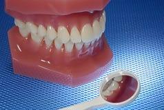 зубоврачевание Стоковая Фотография