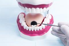 зубоврачевание Стоковые Фотографии RF