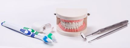 зубы белые Стоковая Фотография