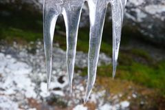 Зубы льда приближают к реке whinter Стоковое Изображение