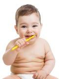 зубы младенца изолированные чисткой сь белые Стоковые Фотографии RF