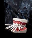 зубы сигарет Стоковая Фотография