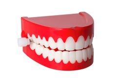 зубы тараторить Стоковые Фотографии RF