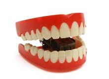 зубы Стоковое Изображение RF