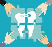 Зуб головоломки, зубоврачебная костоеда, зубы обработки Стоковые Изображения