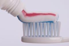 зуб затира Стоковые Фотографии RF