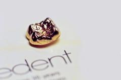 зуб золота Стоковые Фото