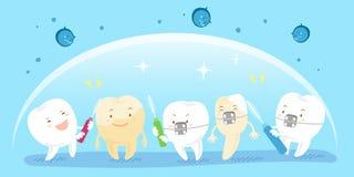 Зуб с чистой концепцией Стоковое фото RF