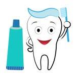 зуб Стоковое Изображение