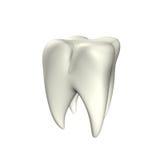 зуб 3d Стоковые Фотографии RF