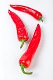 зябкий красный цвет 3 горячих перцев Стоковое Изображение RF