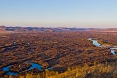 Злаковик и заболоченное место в заходе солнца Стоковая Фотография