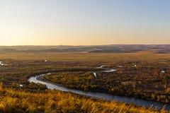 Злаковик и заболоченное место в заходе солнца Стоковые Фото