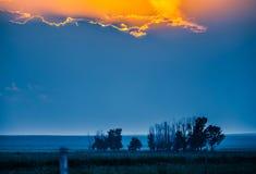 Злаковик на заходе солнца Стоковое фото RF