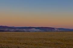 Злаковик на последнем утре осени Стоковая Фотография
