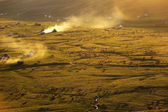 Злаковик Nalati на заходе солнца Стоковое Фото