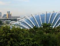 Здание леса облака Сингапура Стоковая Фотография RF