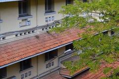 Здание детали с листвой Стоковое Фото
