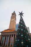 Здание муниципалитет Австралия рождественской елки и Брисбена стоковые изображения rf