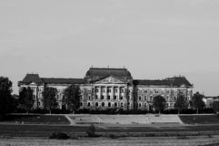 Здание муниципалитет Дрездена Стоковое Фото