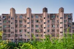 Здание снабжения жилищем с зеленым кустом Стоковое Фото