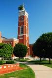 Здание суда Decatur County и известное дерево Стоковые Фотографии RF