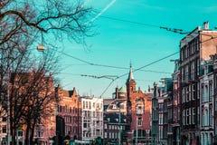 Здания и деревья в Амстердаме, Нидерландах стоковая фотография rf