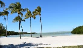 здания florida пляжа Стоковое Фото