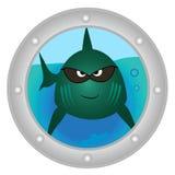 Злая рыба смотрит внутри к иллюминатору бесплатная иллюстрация