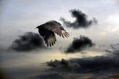 Злое небо Стоковые Изображения