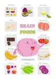 Здоровая еда мозга Стоковое Изображение