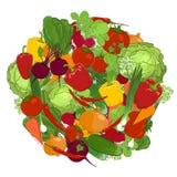 Здоровая еда, свежие овощи иллюстрация штока
