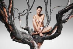 Здоровая женщина сидя на дереве Стоковое фото RF