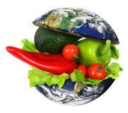 Здоровая международная еда Стоковое Изображение