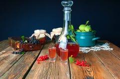 Здоровая домодельная тинктура красной смородины Стоковое Фото