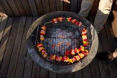 Здоровое барбекю протыкальника Стоковые Изображения RF