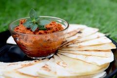 Здоровое горячее распространение с отрезками tortilla Стоковые Изображения