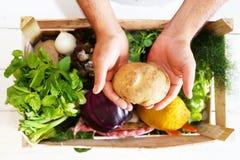 Здоровое фото еды Стоковое Изображение RF