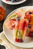 Здоровые все Popsicles плодоовощ Стоковые Изображения