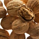 Здоровые грецкие орехи стоковые изображения