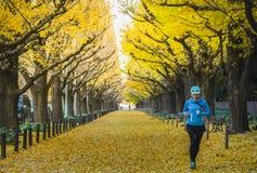 Здоровые женщины бегут вне в утре на бульваре ginko Стоковое Изображение