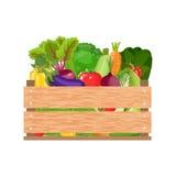 Здоровые свеже сжатые овощи иллюстрация вектора