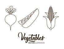 здоровый значок овощей бесплатная иллюстрация