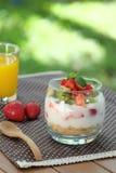 Здоровый и красочный завтрак в саде: Югурт с плодоовощ granola, клубники и кивиа Стоковые Изображения