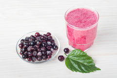 Здоровый помятый плодоовощ с югуртом Смешанное dri blackcurrant ягод стоковая фотография