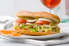 Здоровый сандвич Стоковые Фото