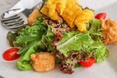 Здоровый салат сделанный из огурца, томата, тофу, семян сезама и свежего лука Стоковая Фотография