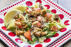 Здоровый салат цезаря омара Стоковая Фотография RF
