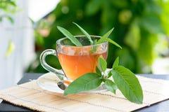 Здоровый чай шалфея медицины Стоковые Фотографии RF